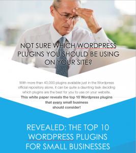 WP Plugins Whitepaper